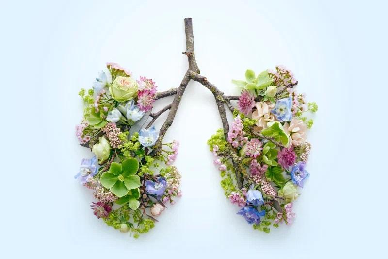 B-Mind_breathing-machine-lungs-doctors